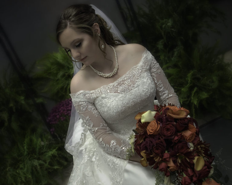 beautiful fall bride - brownstown wedding photographer